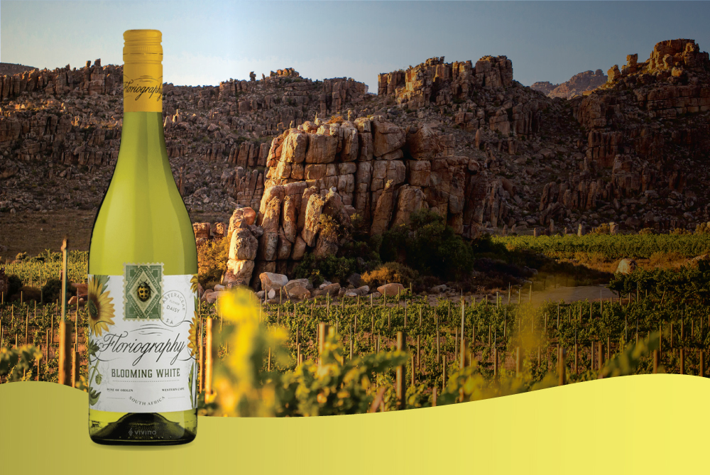 Cederberg<br />Floriography<br />Blooming<br />White 2018